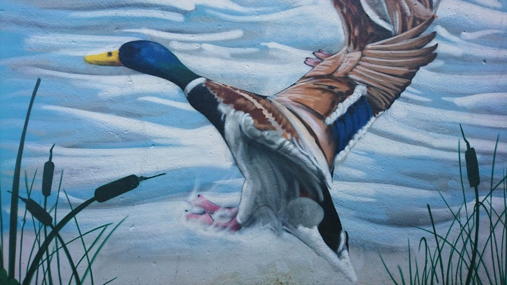 peintre graffiti herault